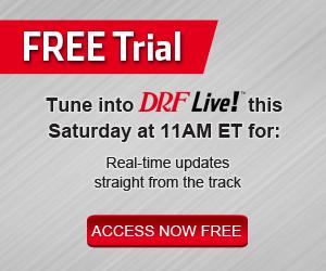 DRF Live Promo Banner
