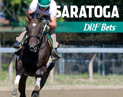 DRF Web Marquee Image